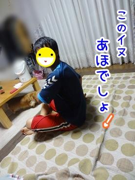kinako539.jpg