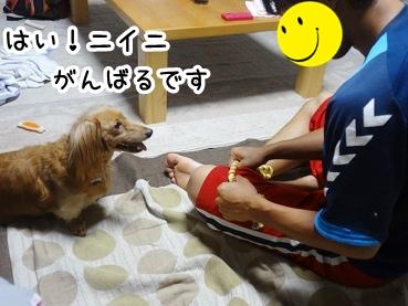 kinako541.jpg