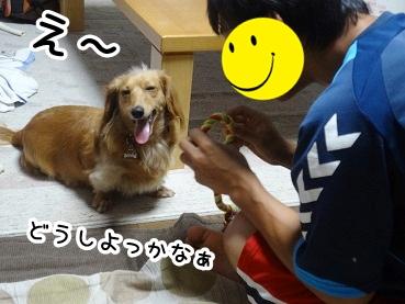 kinako543.jpg