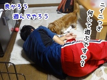 kinako546.jpg