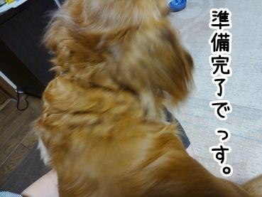 kinako561.jpg