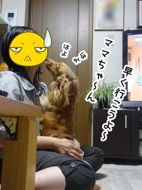 kinako562.jpg