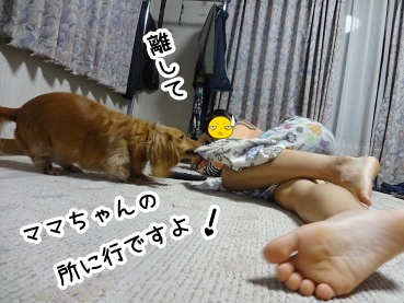 kinako573.jpg