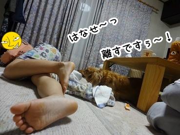kinako574.jpg