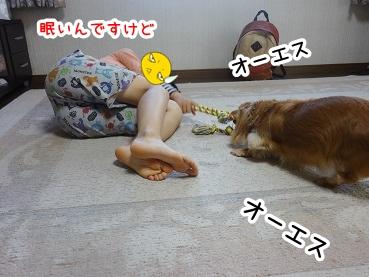 kinako579.jpg