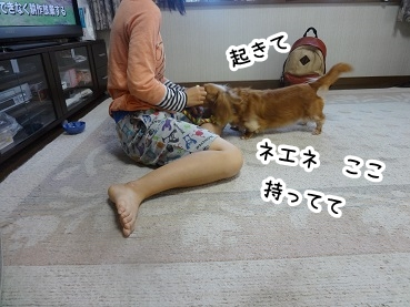 kinako581.jpg