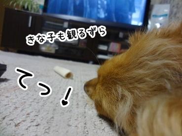 kinako596.jpg