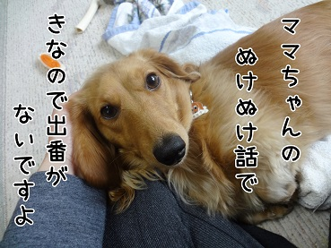 kinako6.jpg