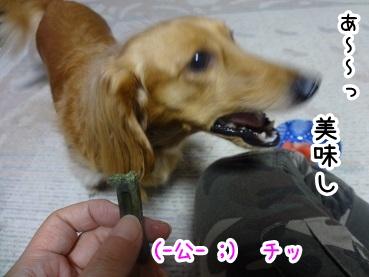 kinako607.jpg
