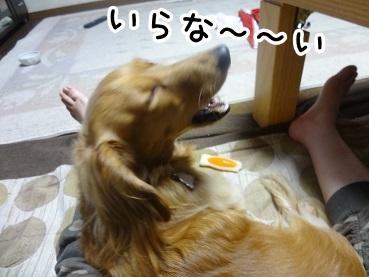 kinako612.jpg