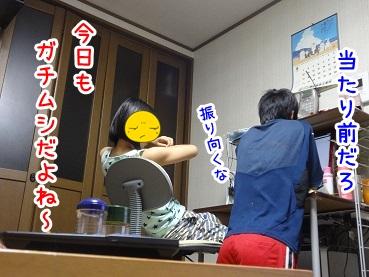 kinako625.jpg