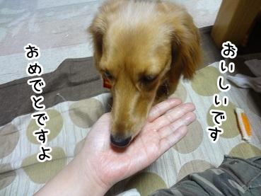 kinako630.jpg