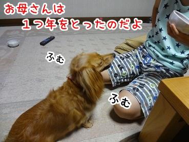 kinako631.jpg