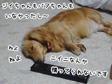 kinako642.jpg