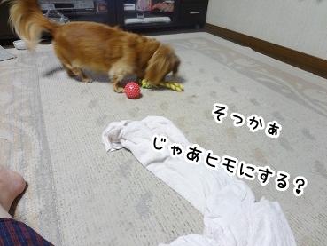 kinako649.jpg