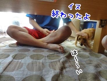 kinako665.jpg