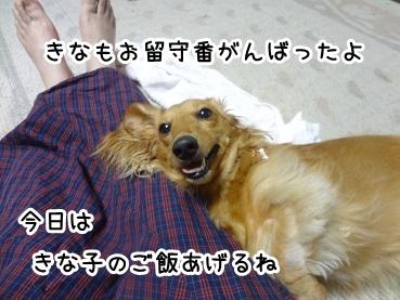 kinako676.jpg