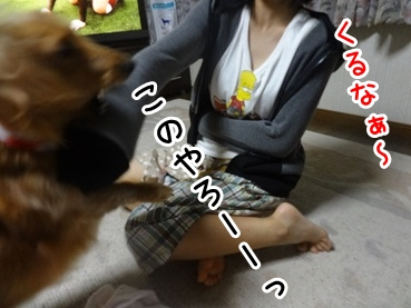 kinako679.jpg