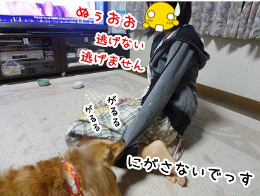 kinako682.jpg