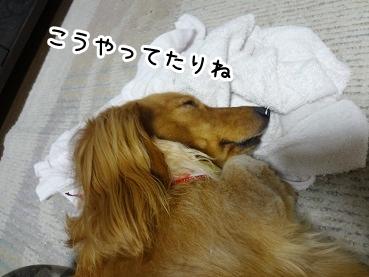 kinako689.jpg