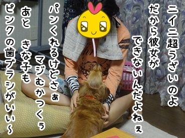 kinako704.jpg