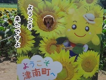 kinako706.jpg