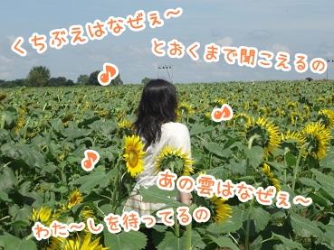 kinako710.jpg