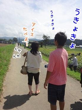 kinako718.jpg