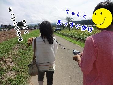 kinako719.jpg