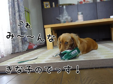 kinako72.jpg