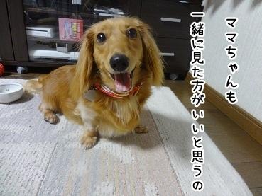 kinako725.jpg