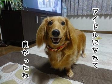 kinako727.jpg