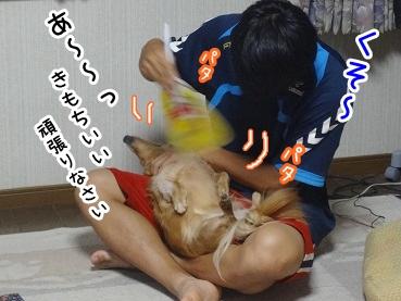 kinako742.jpg