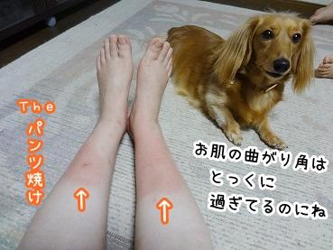 kinako760.jpg