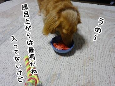 kinako762.jpg