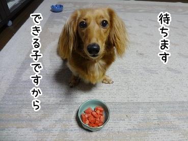 kinako764.jpg