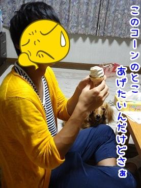 kinako770.jpg
