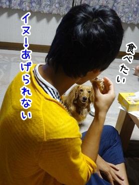 kinako772.jpg