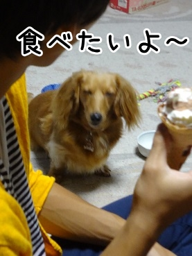kinako773.jpg