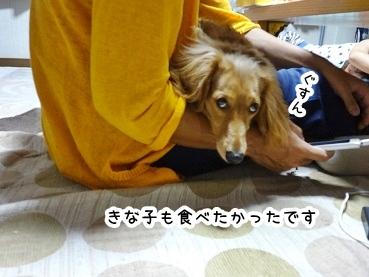 kinako777.jpg