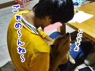 kinako778.jpg