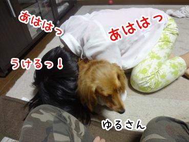kinako805.jpg