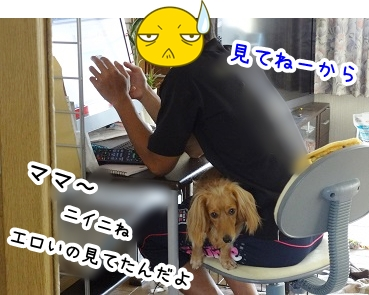 kinako820.jpg