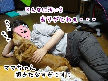 kinako821.jpg