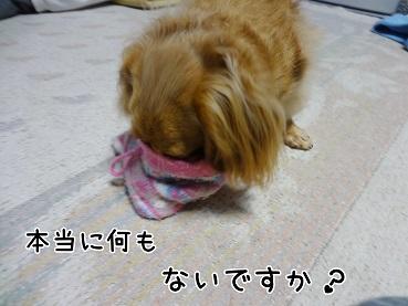 kinako83.jpg