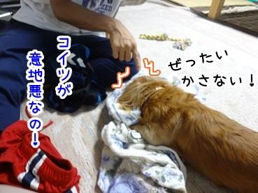 kinako841.jpg