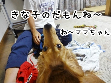 kinako842.jpg