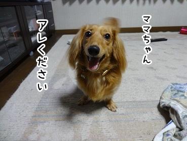 kinako857.jpg