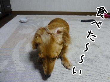kinako859.jpg