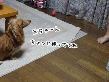 kinako883.jpg